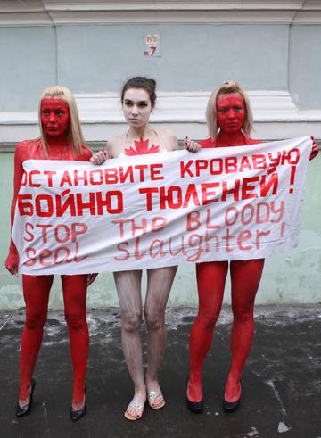 фото - Андрей Никитин