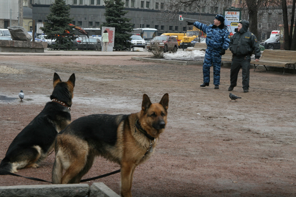 фото - Анна Артемьева «Новая»
