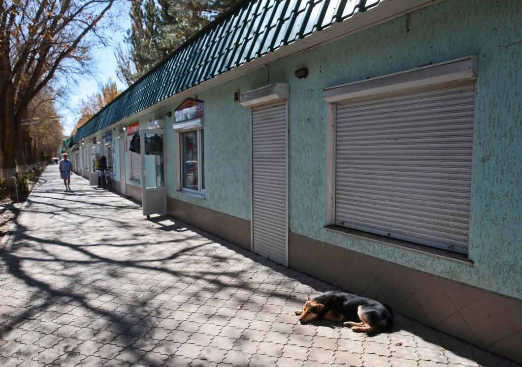 «Самопиар» на катастрофе. Жители Армянска вновь массово жалуются на ухудшение самочувствия, но теперь их не спасают, а называют провокаторами