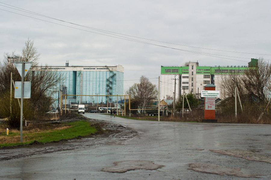 Элеватор в токаревке фото волгоградского элеватора