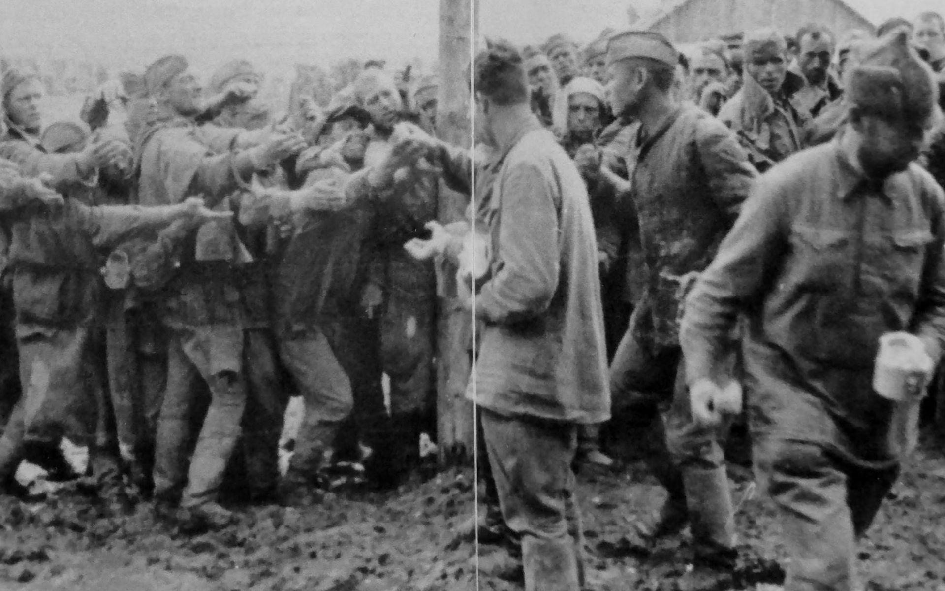 Генералы попавшие в плен в гг вов 1941 1945